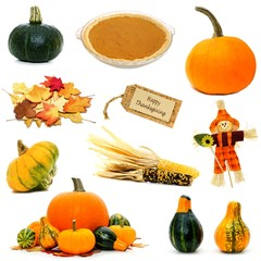 Various autumn or Thanksgiving items individually isolated