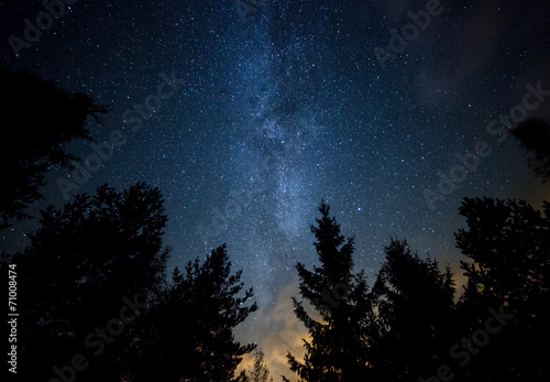 Foto op Canvas Nacht Milky Way over the Forest