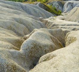 Very large ,deep soil cracks