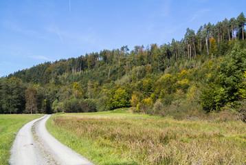Herbst im Großen Goldersbachtal / Schönbuch