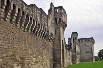 Avignone, le mura della citta'