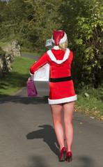 Santa helper delivering Christmas presents