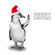 Funny penguin with santa