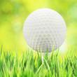 canvas print picture - Golf concept