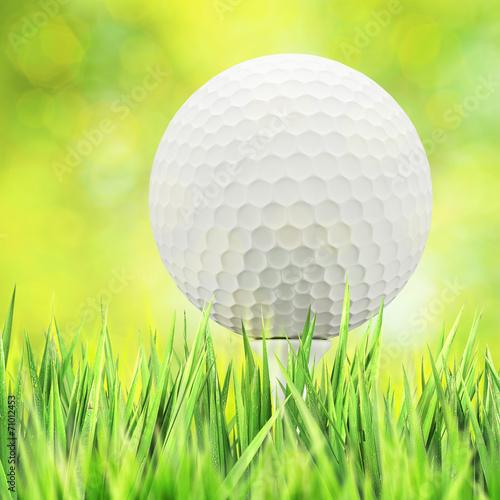 canvas print picture Golf concept