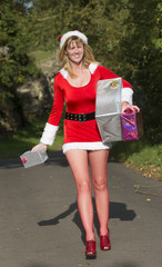 Santa's helper delivering presents