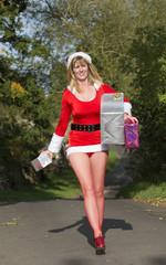 Santa's helper delivering presents