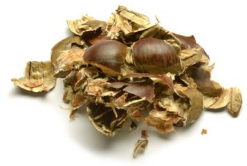 Chestnut Castagna Castaña Kastanie Châtaigne Каштан