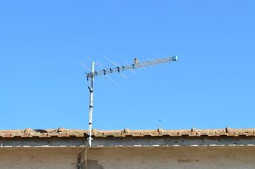 Passero su antenna