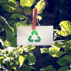 Recycle Sign on Small White Paper at Garden