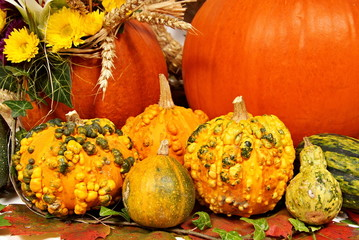 Autumn decoration with more pumpkin