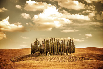 Fototapeta Piękna jesień krajobraz vinatge