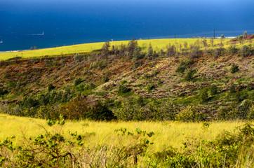 Kauai West coast