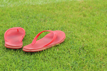 Red slippers lay on the the green grass.