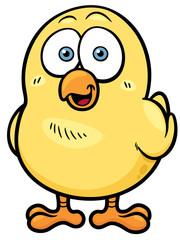 Vector illustration of little chicken