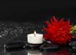Wet Zen Spa Stones with red ranunculus flower