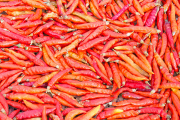 Group of Dried Chili