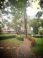 stone walkway in public park