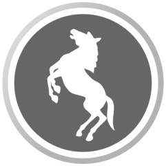 a horse in a grey Panel