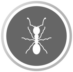 an ant in a grey Panel