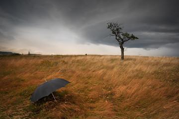 Météo et pluie