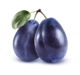 Whole blue plums isolated on white background