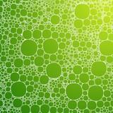Seamless background foam bubbles, white on green
