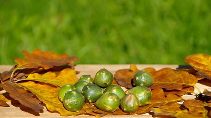 Autumn fruits on wooden table - the unknown