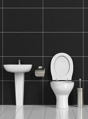 Sauberes WC mit Toilette und Waschbecken