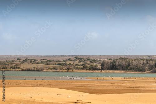 Papiers peints Maroc Souss Masa National Park
