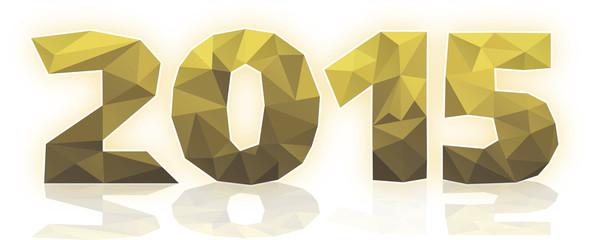 2015 polygones or vecteurs