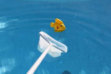Plastikfisch wird aus Swimmingpool geholt