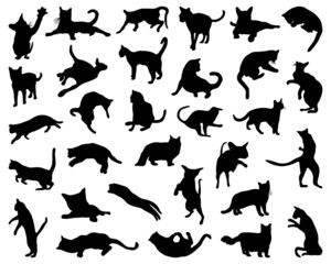 Big set of cats silhouettes, vector illustration