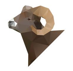 Geometric sheep.