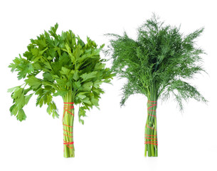 bunch of parsley and dill isolated on a white background