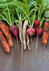 Garden radish, carrots, daikon with soil on wooden background
