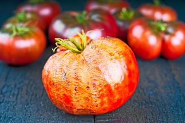 Rotten and ripe tomatoes closeup