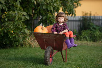 little funny girl with pumpkins
