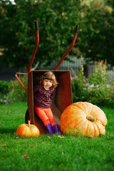 little girl sitting in wheelbarrow with pumpkins