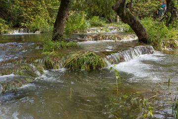 Forêt inondée et cascades