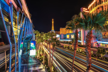 Night illumination, palm trees, casino,  Las Vegas, Nevada, USA