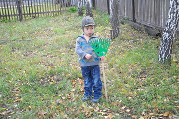 Boy in the yard with rake