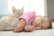 Leinwanddruck Bild - Baby and cat daytime sleeping