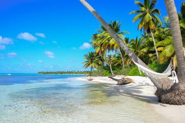 A hammock between palm trees on tropical beach