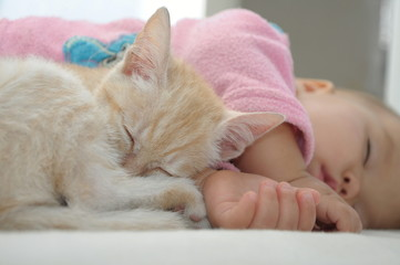 Baby and cat daytime sleeping together