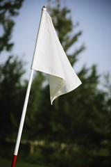 Flag On The Golf Course