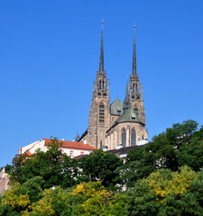 Cathedral of Peter and Paul in Brno, Czech Republic