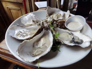 oysters on plate