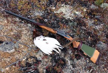 Double-barreled shotgun with a trophy tundra ptarmigan