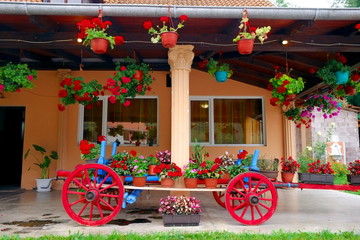 Wagon Filled With Flower Pots, Serbia